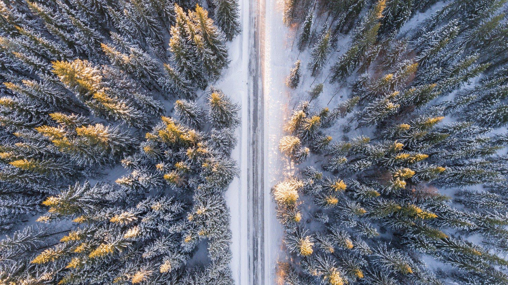 Drohen-Perspektive von oben sektrechter Blick nach unten auf eine Straße, einen verschneiten Tanntenwald mit Sonnenlicht an den Spitzen. Bild: Pixabay/invisiblepower